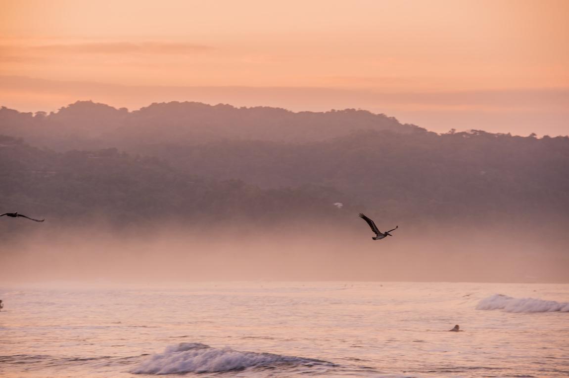 PURA VIDA: מסע לקוסטה ריקה