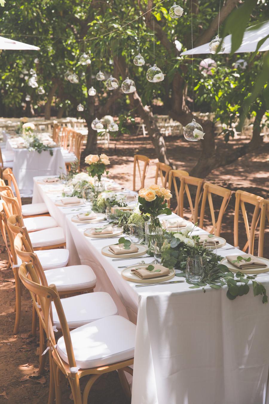 מסיבת קוקטייל בטבע: החתונה של ליטל ופרד