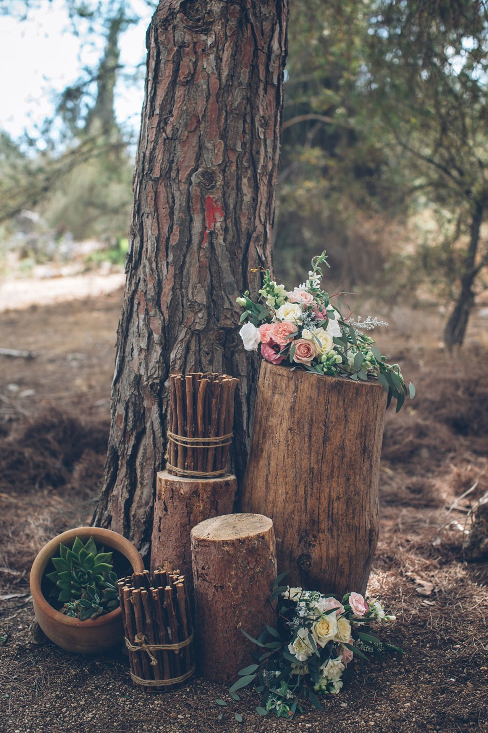 FOREST LOVE: השראה לעיצוב חתונה בשמורת טבע