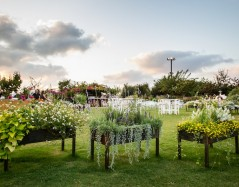 הקיו – גן אירועים בגליל ים