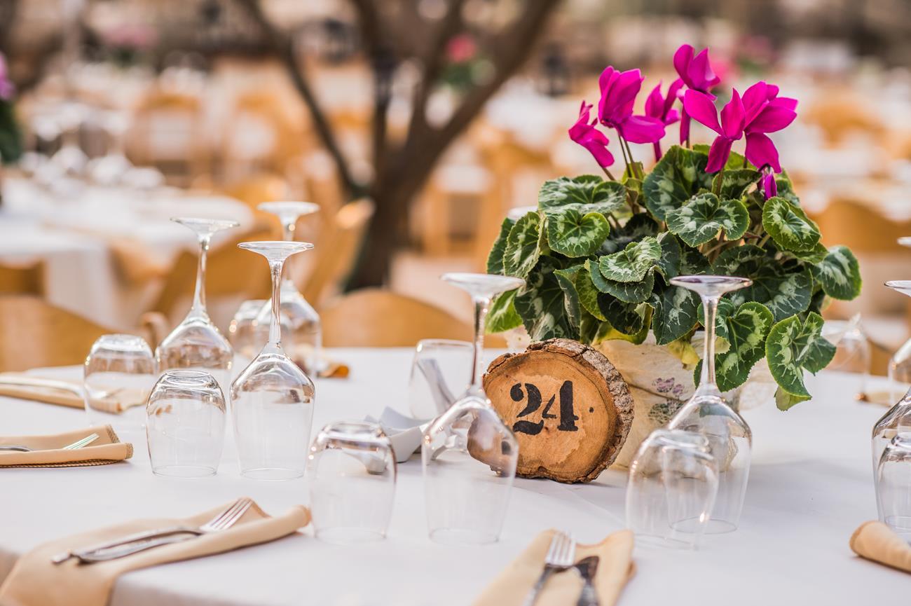 חתונה קסומה בחודש וחצי בגן האירועים נאות קדומים