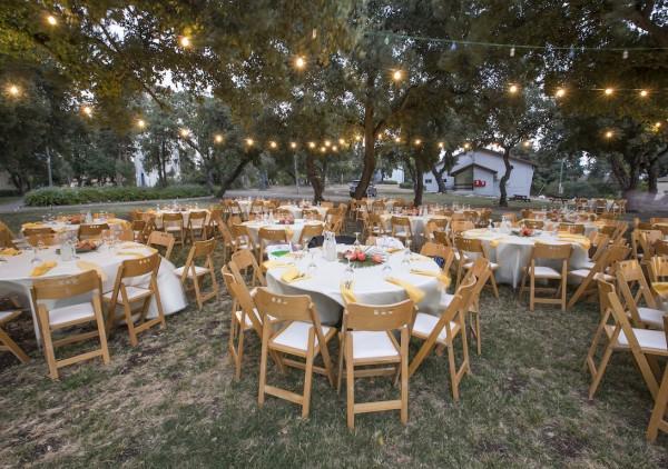יום החתונה כהזדמנות לתרומה חברתית