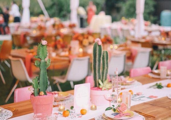 Cactus Crush: כך תשלבו אותם נכון בחתונה