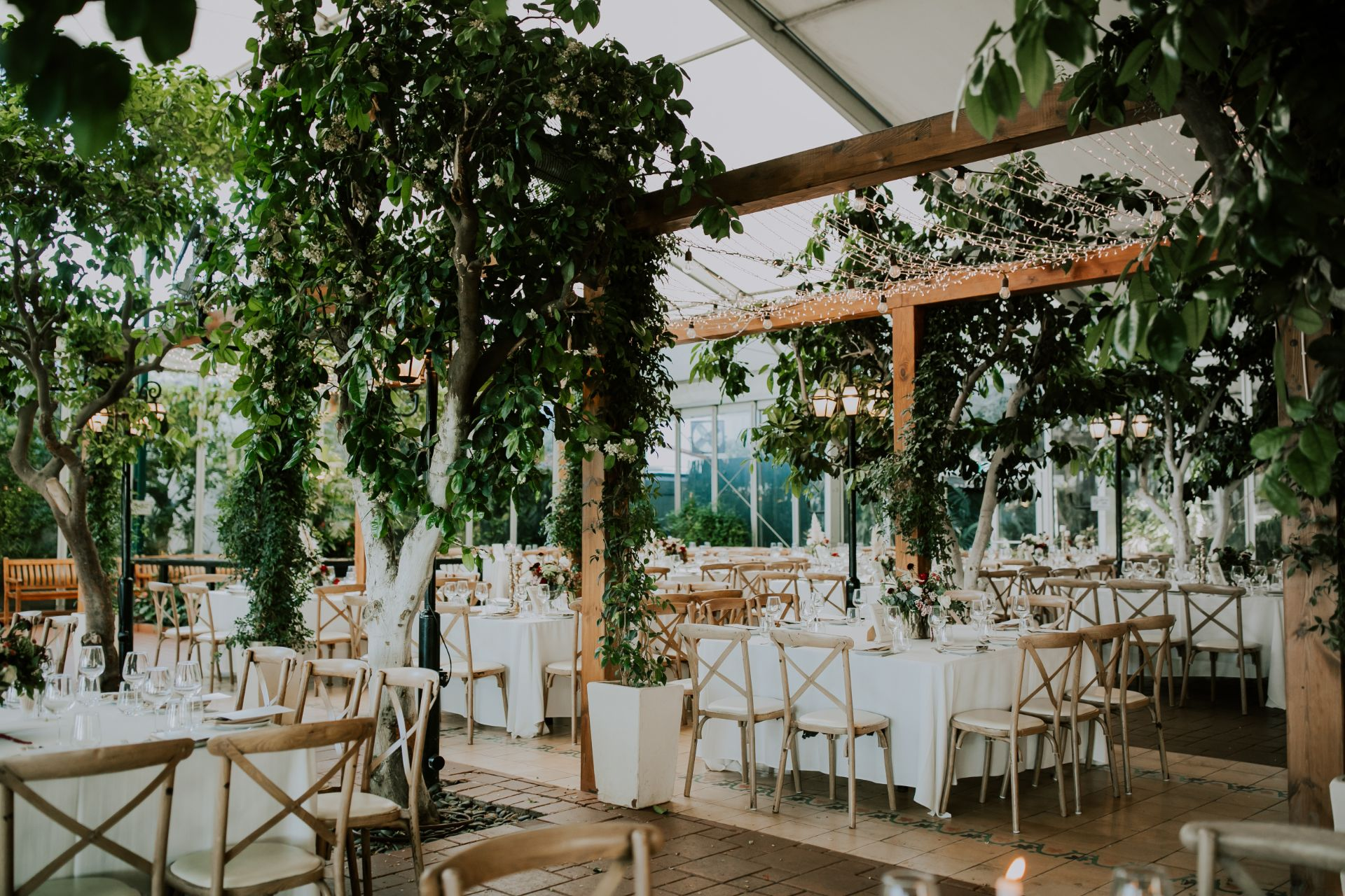 אולד הוליווד: החתונה של יערה ואילן