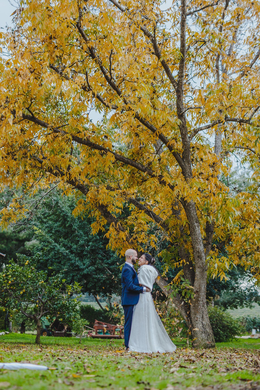 כלות מספרות: החתונה הקולינרית שלי ב'טעם וצבע'