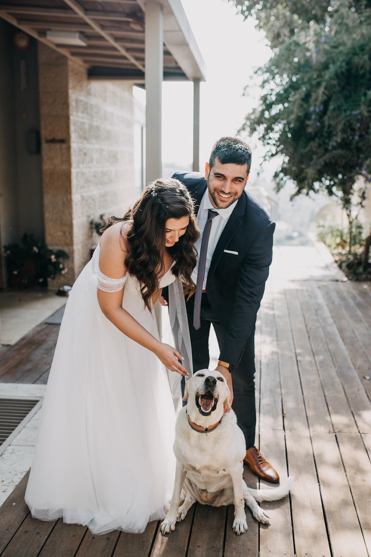 15 כלות ששילבו את חיית המחמד ביום החתונה בצורה מושלמת