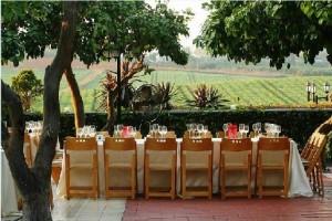 A Backyard Wedding Minus The Backyard