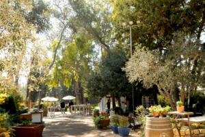 Planning a Wedding in Haifa