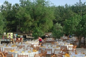 Wedding Venues in the Desert