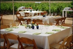 Winery Weddings in Israel